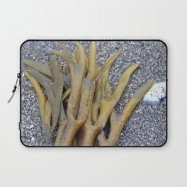 Kelp Bladders Laptop Sleeve