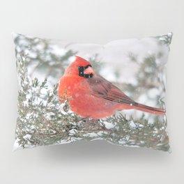 Winter's Beauty Cardinal Pillow Sham