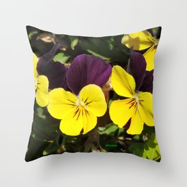 The Pansies at the Corner Throw Pillow