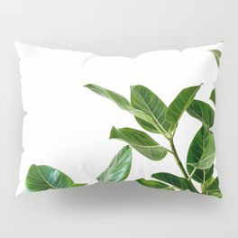 Minimalist Mid Century Abstract Houseplant Green Leaves Fig Tree Pillow Sham