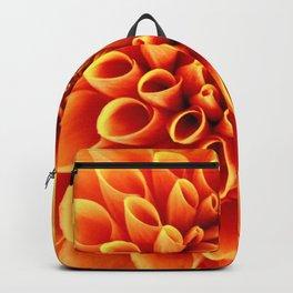 SYMMETRY Backpack