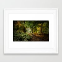 woodland Framed Art Prints featuring Woodland by ZenaZero