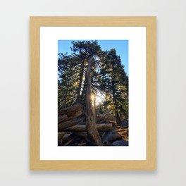 Good Morning Sunshine! Marion Mountain Trail - San Jacinto Peak - California Framed Art Print