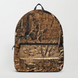 Crumbling Backpack