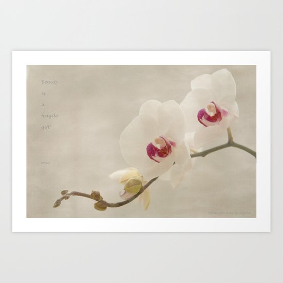 a thing of beauty Art Print