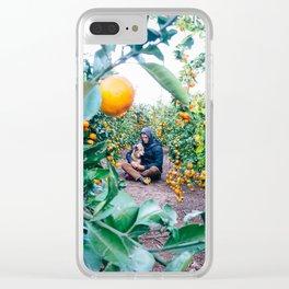 Valencian Orange Grove Clear iPhone Case