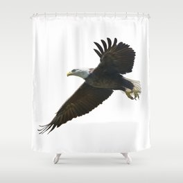 american bald eagle in flight ,watercolor painting Shower Curtain