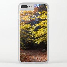 Autumn Light 2 Clear iPhone Case