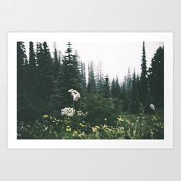 Forest Blooms Art Print