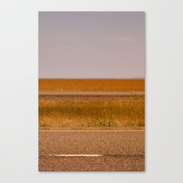 090805.002 Canvas Print
