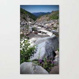 (#93) Mountain Flowers Canvas Print