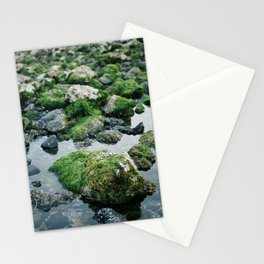 Mossy Stationery Cards