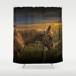 Saddle Horse on the Prairie Shower Curtain