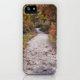 Fall and North DuPage Woods Trail iPhone Case