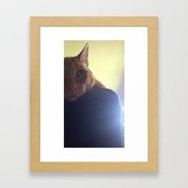 Kyo  Framed Art Print