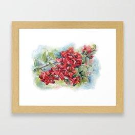 Watercolor Apple quince bloom Framed Art Print