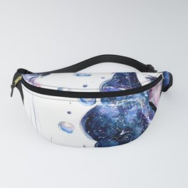 Cosmos. Fanny Pack