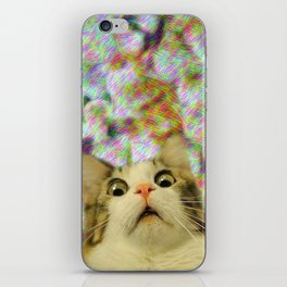 I Don't Think That Was Catnip iPhone Skin
