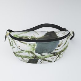 Steller's Jay in the Snow Fanny Pack