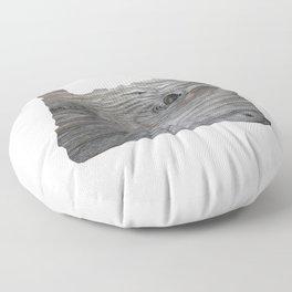 OR Floor Pillow