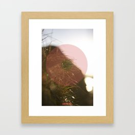 Summer 01 Framed Art Print
