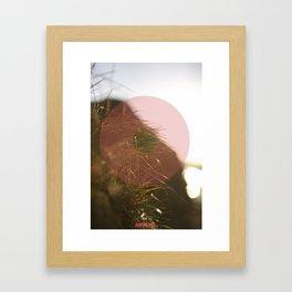 Summer 01 Framed Art Print