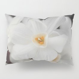 Paperwhites Pillow Sham