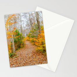 Never Ending Path Stationery Cards