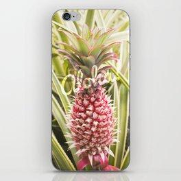 Pink Pineapple Aloha! iPhone Skin