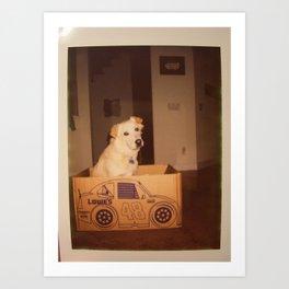 polaroid: in a cardboard box. Art Print