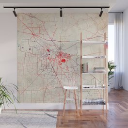 Davie map Florida painting Wall Mural