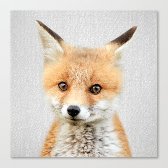 Baby Fox - Colorful Canvas Print