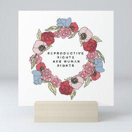 Color Reproductive Rights Human Rights Mini Art Print