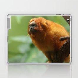 Orange Monkey Photography Print Laptop & iPad Skin