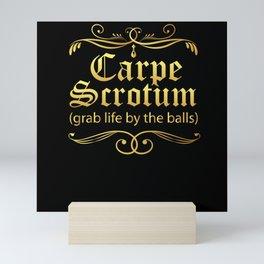 Carpe Scrotum Grab Life By The Balls Mini Art Print