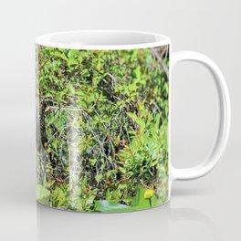 The Limpkin II Coffee Mug