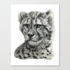 Young Guepard g094 Canvas Print