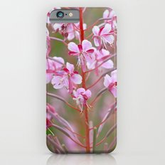Fireweed 3990 Slim Case iPhone 6s