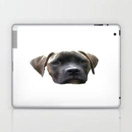 Louis Laptop & iPad Skin