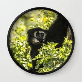 Black monkey Wall Clock