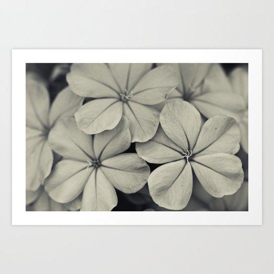 Like Silver Art Print