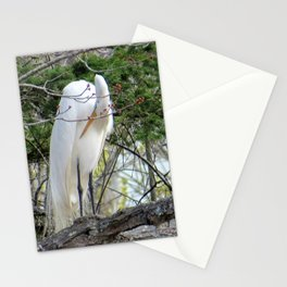GREAT WHITE EGRET (4 OF 4) - BOWING Stationery Cards