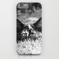 READY TO POUNCE - KITTEN PHOTOGRAPH Slim Case iPhone 6s