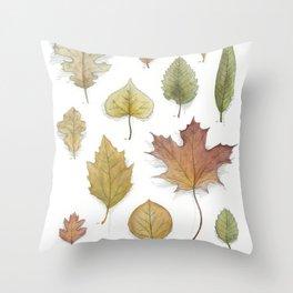 Autumnal Cartography Throw Pillow