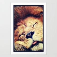 Sleeping Lion - for iphone Art Print