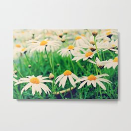 The Tranquil Meadow Metal Print
