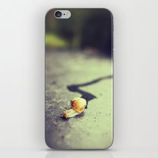 Snail on its way iPhone & iPod Skin