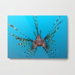 Animal Lionfish Fishes Fis Metal Print