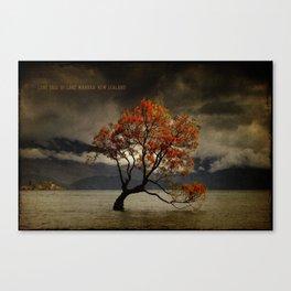 Lone Tree Of Lake Wanaka, New Zealand Canvas Print