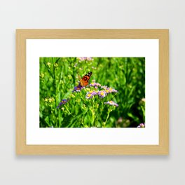 Butterfly and Flowers Framed Art Print